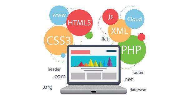 Jettim web tasarım seo web site